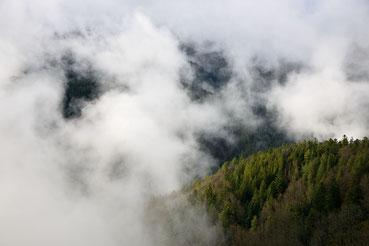 Nebelwolken über dem Gutachtal