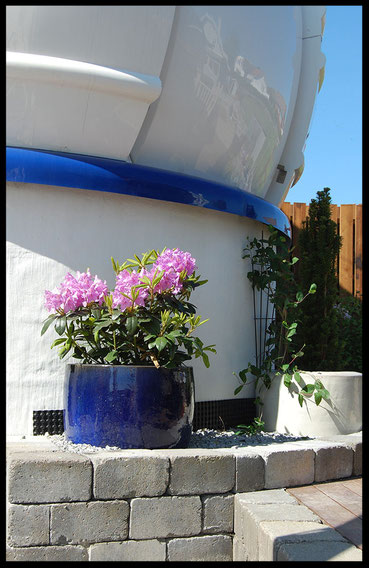 urns and plants