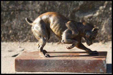 bouledogue en bronze de vienne.bronze animalier