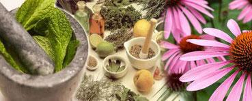 Cos'è e come funziona la fitoterapia
