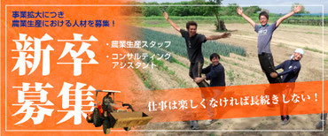 【アルファイノベーション】新卒募集