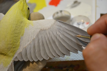 Painting on the behind of feathers