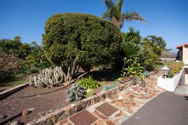 Gartenbereich neben Garageneinfahrt