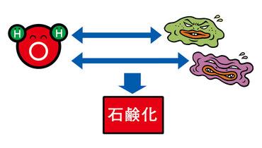 アルカリ電解水の洗浄プロセス-石鹸効果