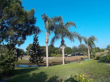 Villa-Catch-The-Sun Palmengarten