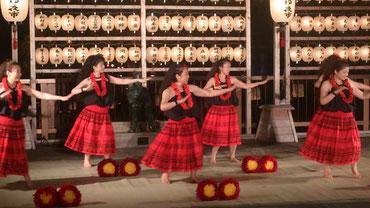 そして、この躍動感あふるるダンス!! ご存知【フラダンス~】でございます  中央で滑らかな手つきで踊っていらっしゃるは当学院の生徒さんなんですよ!お茶やお着物にも長く親しまれる傍らで活動的な一面も!!