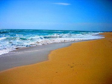 . . . der Strand