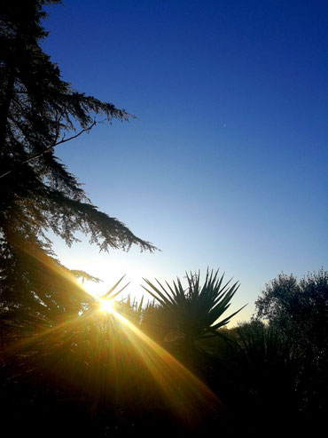Sonnenaufgang über dem Anwesen