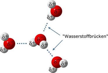 Wasserstoffbrücken bei Wasser; Quelle: https://chemiezauber.de/inhalt/basic-1/wasser-2/wasserstoffbr%C3%BCcken.html