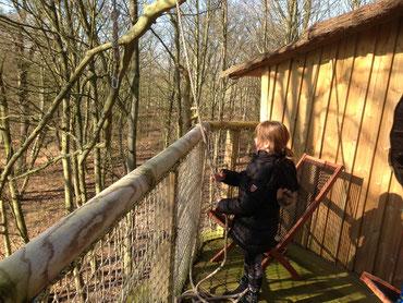 cabane dans les arbres en famille