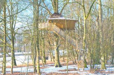 location insolite - cabane dans les arbres - cabane de l'écureuil