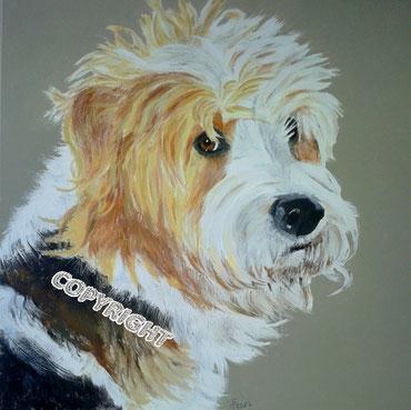 Hundeporträt: Kopfporträt von Griffonmix. Hund schaut Betrachter an, Tiermalerei, gemalte Tierportraits nach Fotovorlage, Tiere zeichnen lassen