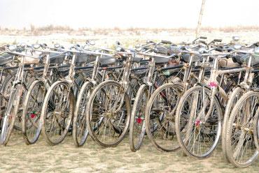 日本の大正~昭和初期を想わせる自転車が、インドでは主流です。ママチャリに慣れている私には、強面な代物です(*_*;