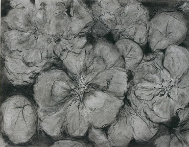 charcoal drawing on paper