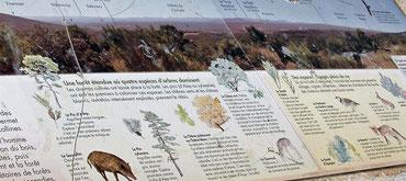 le Parc abrite des sites remarquables de par leurs habitats et les espèces qui y vivent, parfois menacées