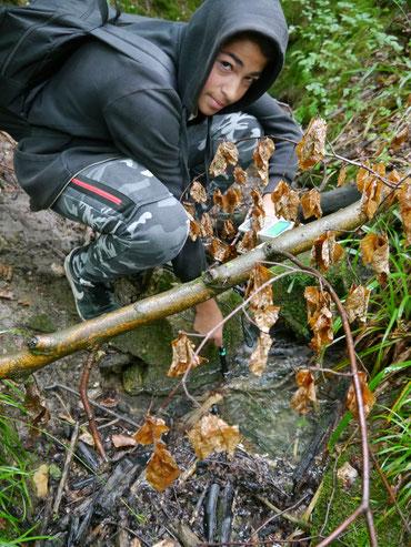 Am Ruschbach werden Wasserproben mit dem neuen Hightechgerät entnommen.