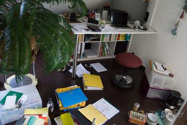 """am Schreibtisch sitzend, mich umschauend, so kam dann """"ach was nix ab durch die Hecke, ab durch die Palme gehts..."""""""