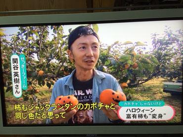 テレビで柿のPR