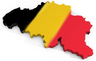 DASIR AUTOPARTS en Belgique