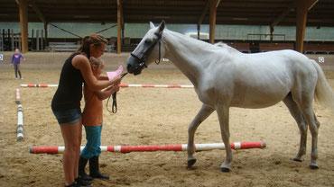 Zeltlager 2012 - Vorführen an der Hand mit Lola
