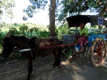 Pferdekutsche in Inwa