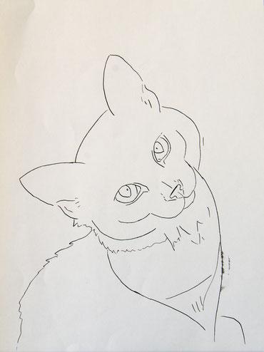 """Рисунок для вебинара """"Как нарисовать шерсть кошки"""""""