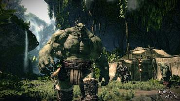 Der Ork für's Grobe - Arkail [Quelle: Cyanide Studio]