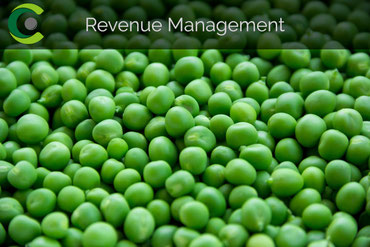 credo.vision | Revenue Management
