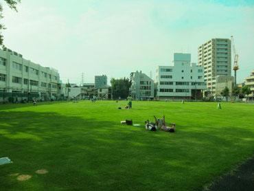 町田シバヒロのポスティング