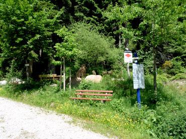Ellbachbrunnen im Schwarzwald