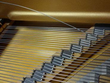 弦を切るのは、人生で3回目。切れたのは二点ソの音。