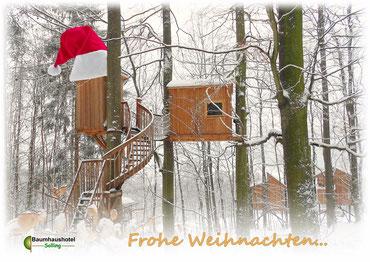 Baumhaus im Schnee, Bild: Baumhaushotel Solling.