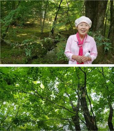 自然に苔が生えて30年以上