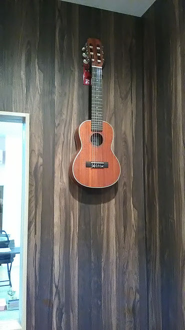 壁美人、エレキギターや小型の楽器に向いてるようです