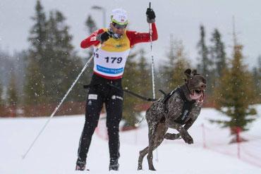 Ole Einar Björndalen beim Skijöring mit Non-stop dogwear Ausrüstung
