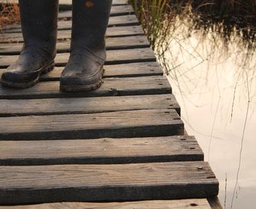 Wanderung im Hohen venn bei Monschau