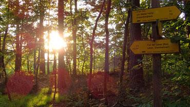 Die letzten Sonnenstrahlen zu Beginn des Langen Wegs