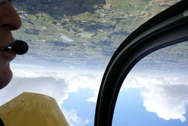 Falco aerobatics