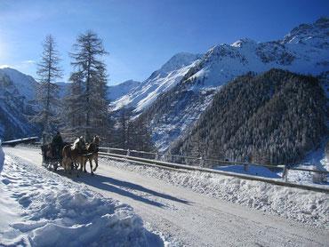Pferdeschlitten im Schnee in den Bergen unter blauem Himmel