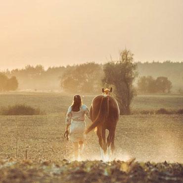 Freundschaft Mensch Pferd