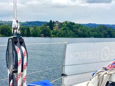 sailingzuerich.ch, segelschule, zürichsee, firmen events, richterswil, stäfa, segeln, zuerich, einzelunterricht, gruppenkurse, auffrischungskurse, segelkurs, weinbau, winzer, wein, reben