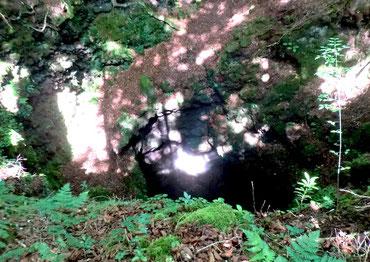 本栖風穴に射す木漏れ日