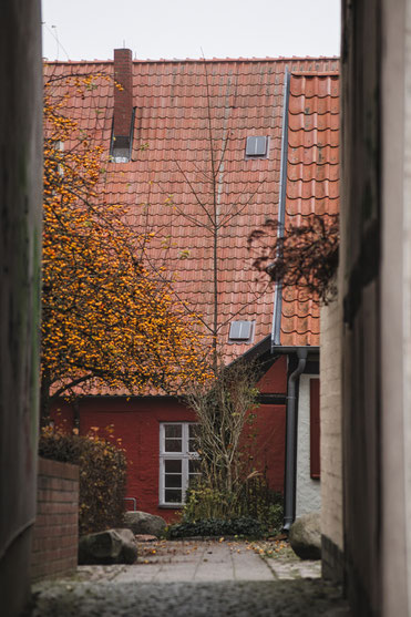 heilgeist kloster hansestadt stralsund nebel herbst november mecklenburg vopommern heimatlicht fotografie geschichte heimat ostsee urlaub ausflug moody