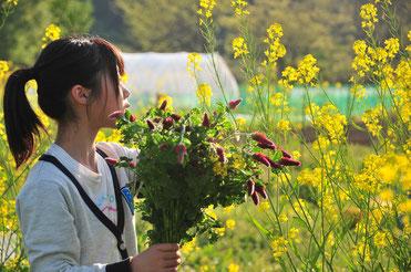 自然栽培 農業体験 体験農場 野菜作り教室  さとやま農学校