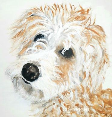 Kopfporträt von Mischling: braune Augen, schwarze Nase. Schnauze weißes Fell, Kopf und Ohren rötliches Fell, Tiermalerei, gemalte Tierportraits nach Fotovorlage, Tiere zeichnen lassen