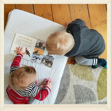 Das Rabenkind hatte Besuch von seiner kleinen Freundin E. - zuckersüß die beiden. Er mimte den großen Bruder, fütterte sie und zeigte ihr wie sie dem Buch Geräusche entlockt...