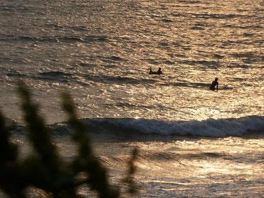 SUNSET SURFING♪