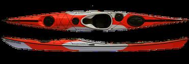 Sea Leopard 490