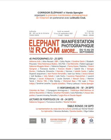 Corridor Elephant in the room Prouvost Elizabeth Photographe