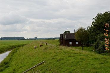 """An der Weschnitz - Blick zum NSG """"Weschnitzinsel"""""""